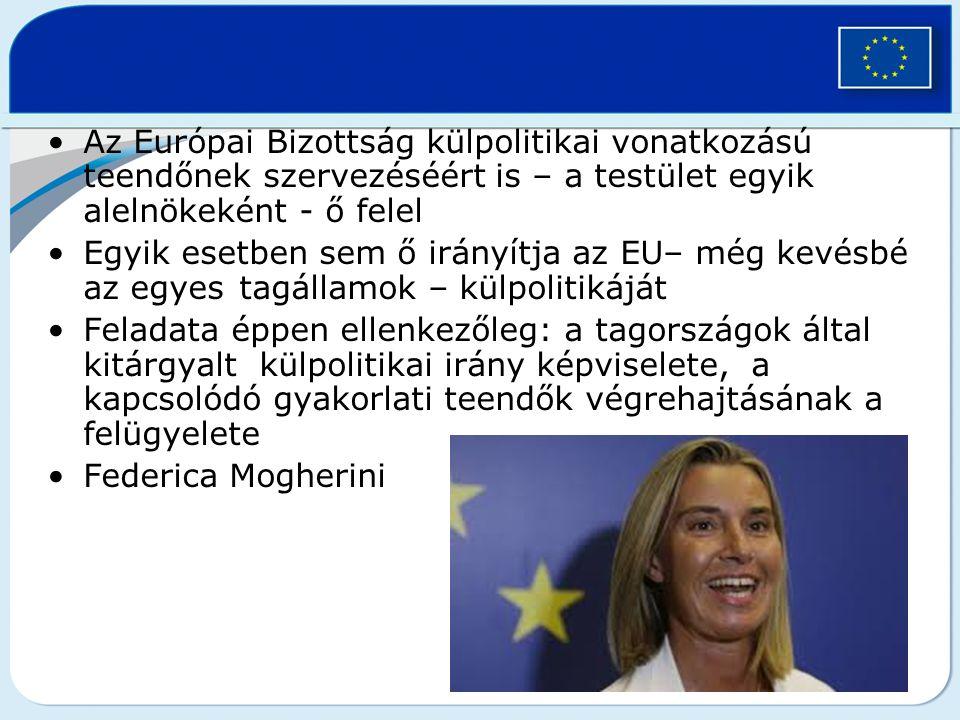 Az Európai Bizottság külpolitikai vonatkozású teendőnek szervezéséért is – a testület egyik alelnökeként - ő felel