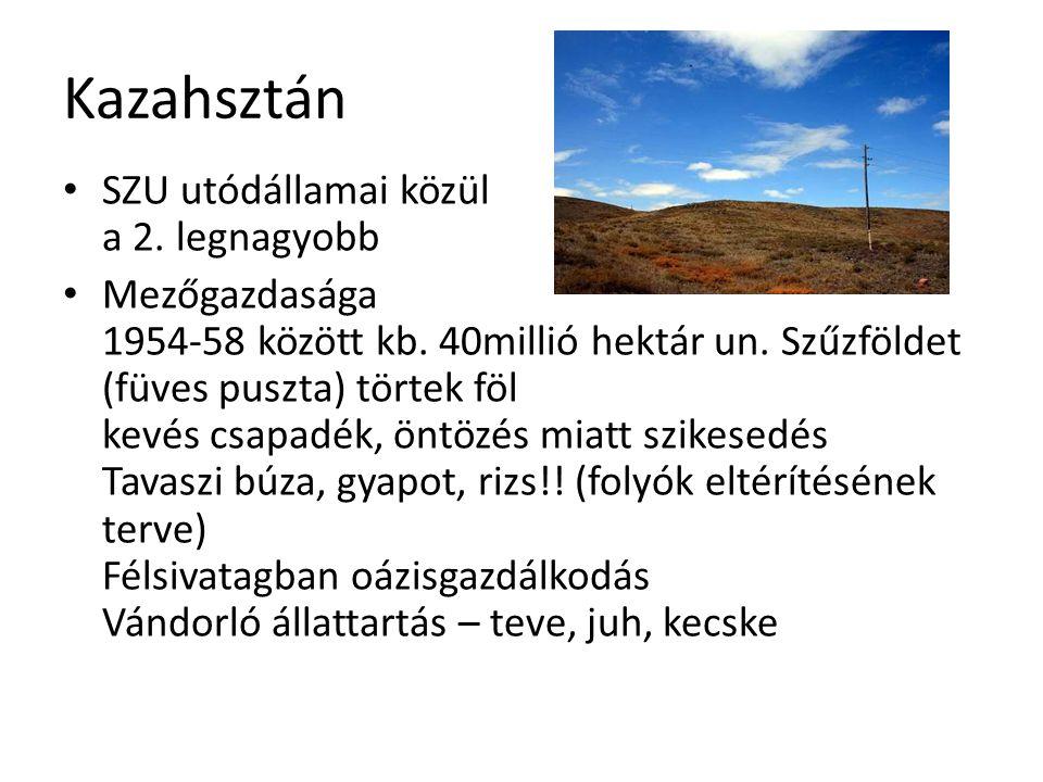 Kazahsztán SZU utódállamai közül a 2. legnagyobb