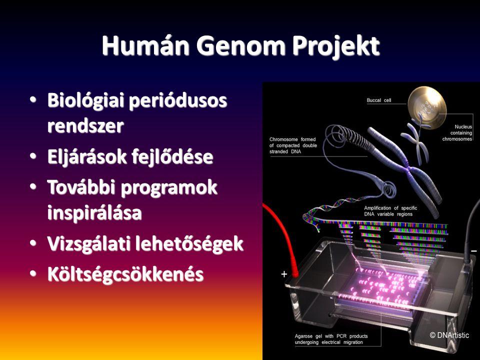 Humán Genom Projekt Biológiai periódusos rendszer Eljárások fejlődése