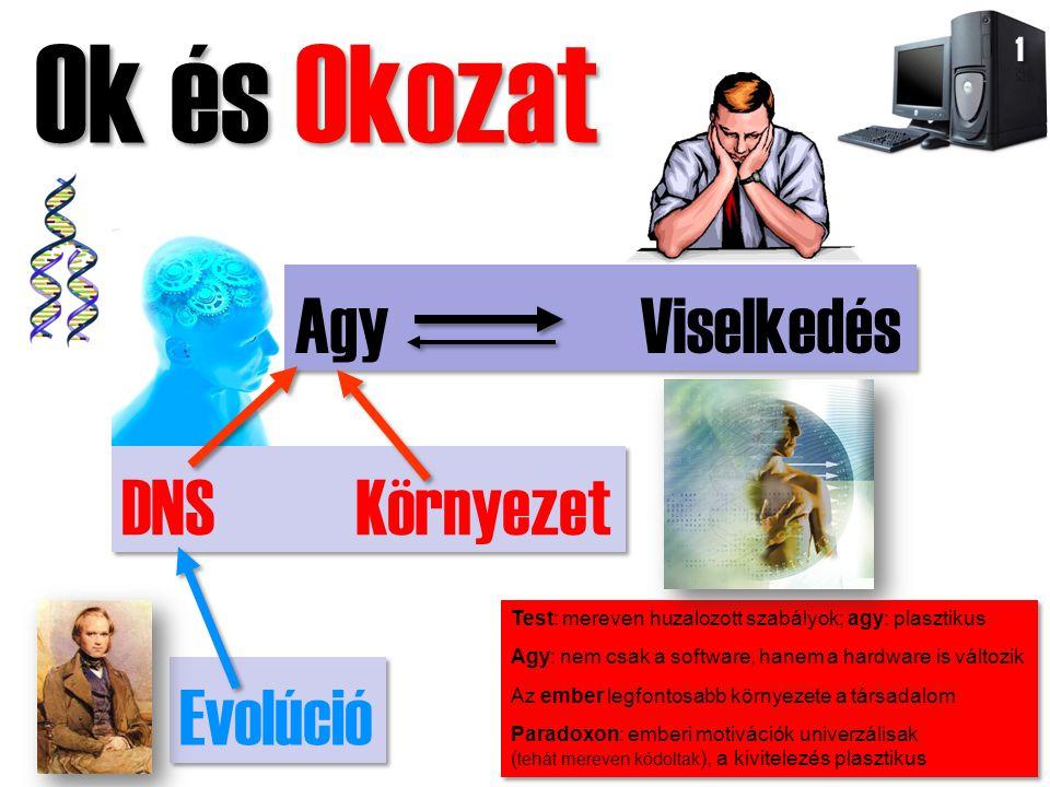 Ok és Okozat Agy Viselkedés DNS Környezet Evolúció 1