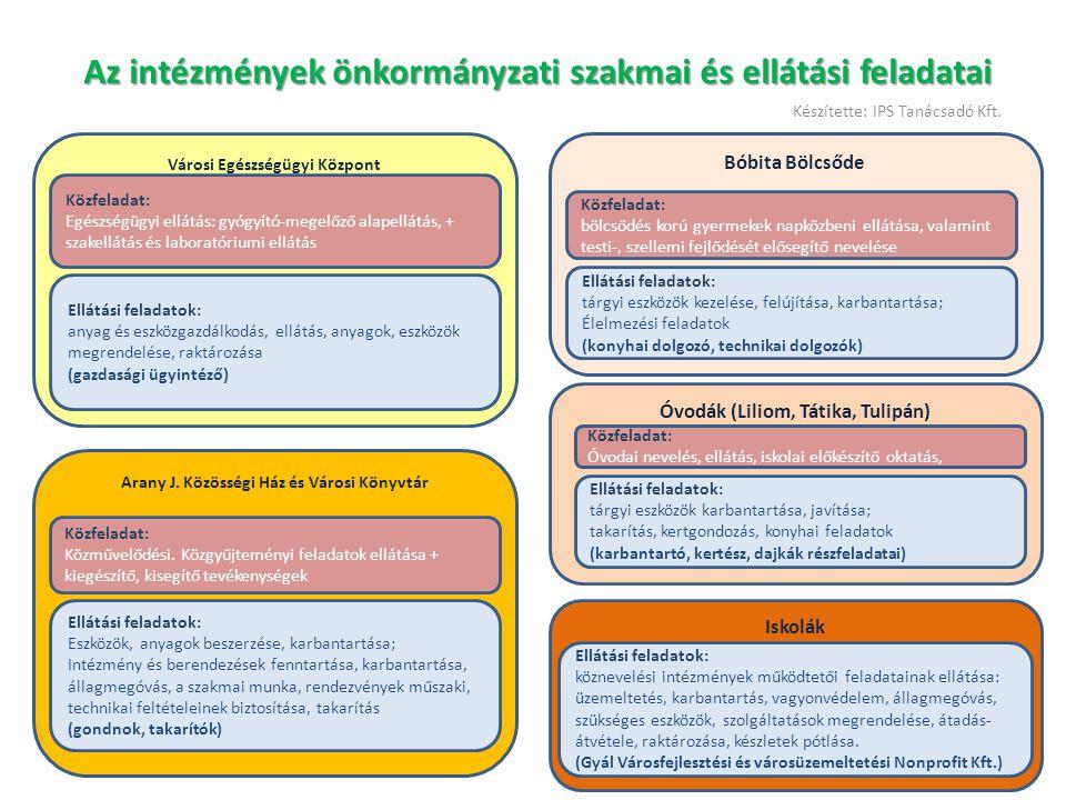 Az intézmények önkormányzati szakmai és ellátási feladatai