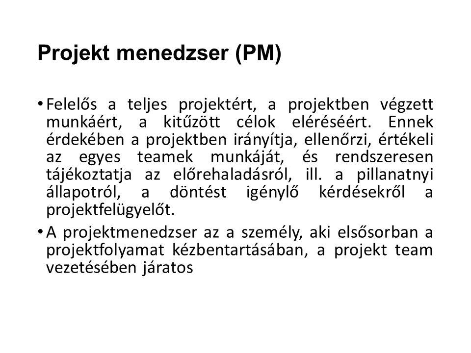Projekt menedzser (PM)