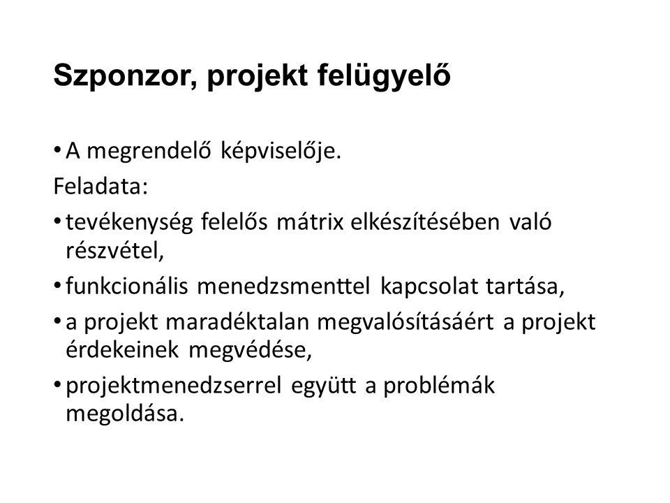 Szponzor, projekt felügyelő