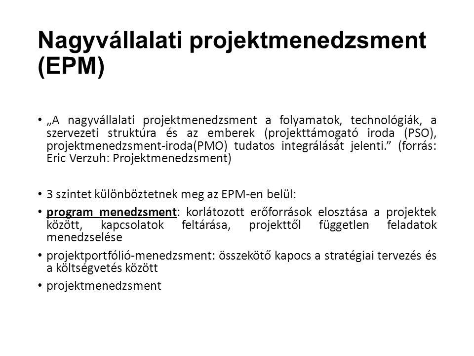 Nagyvállalati projektmenedzsment (EPM)