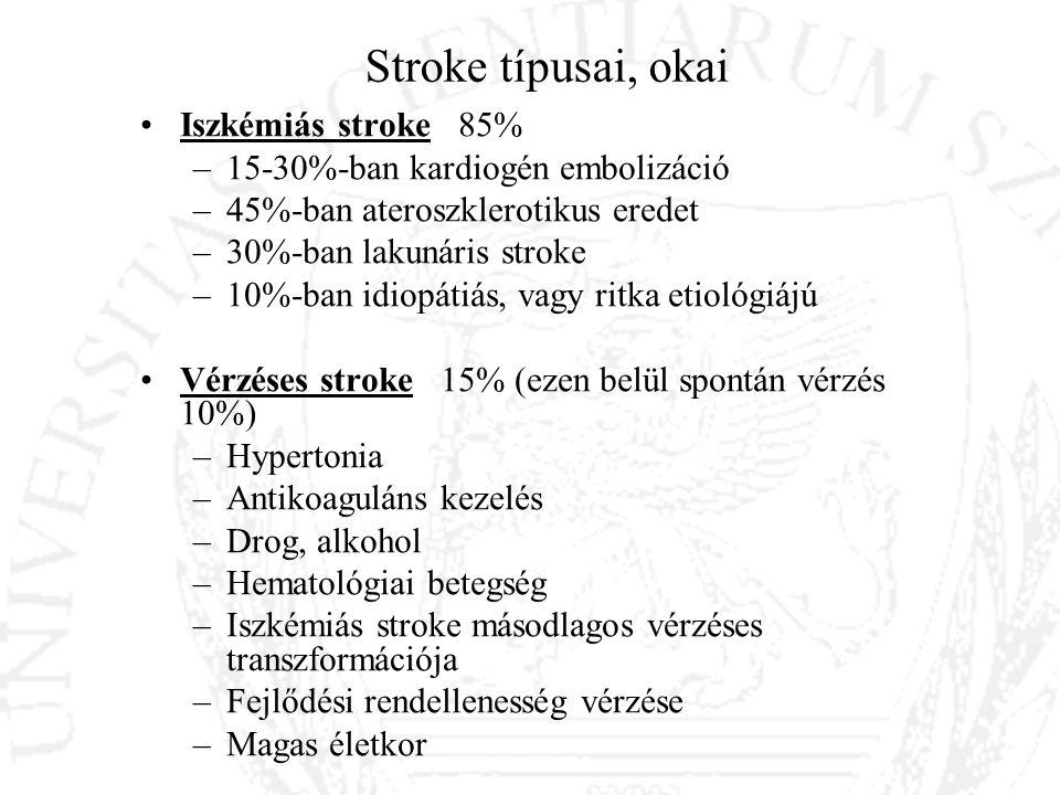 Stroke típusai, okai Iszkémiás stroke 85%