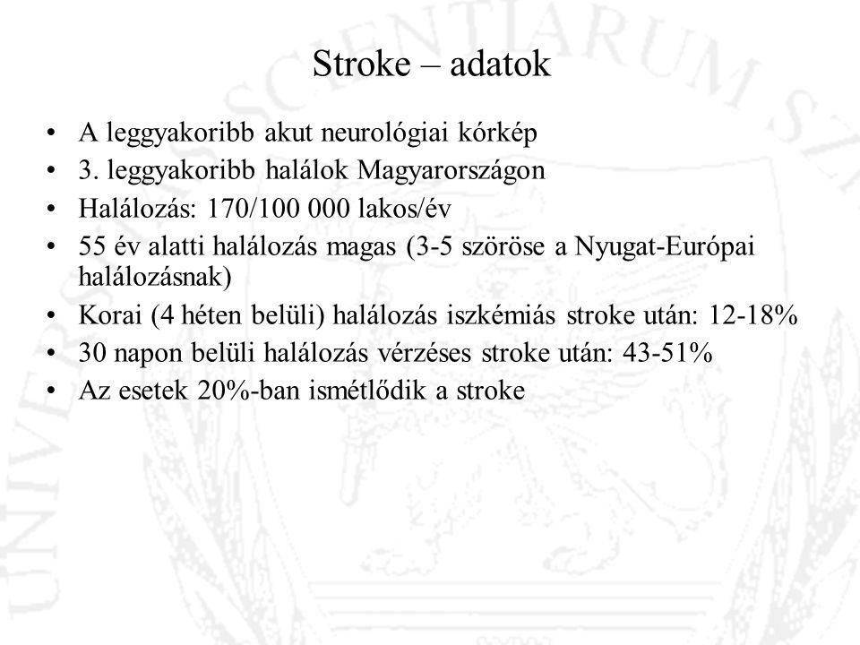 Stroke – adatok A leggyakoribb akut neurológiai kórkép