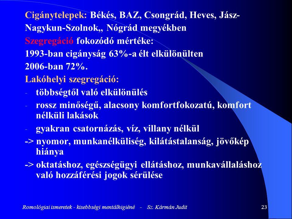 Romológiai ismeretek - kisebbségi mentálhigiéné - Sz. Kármán Judit
