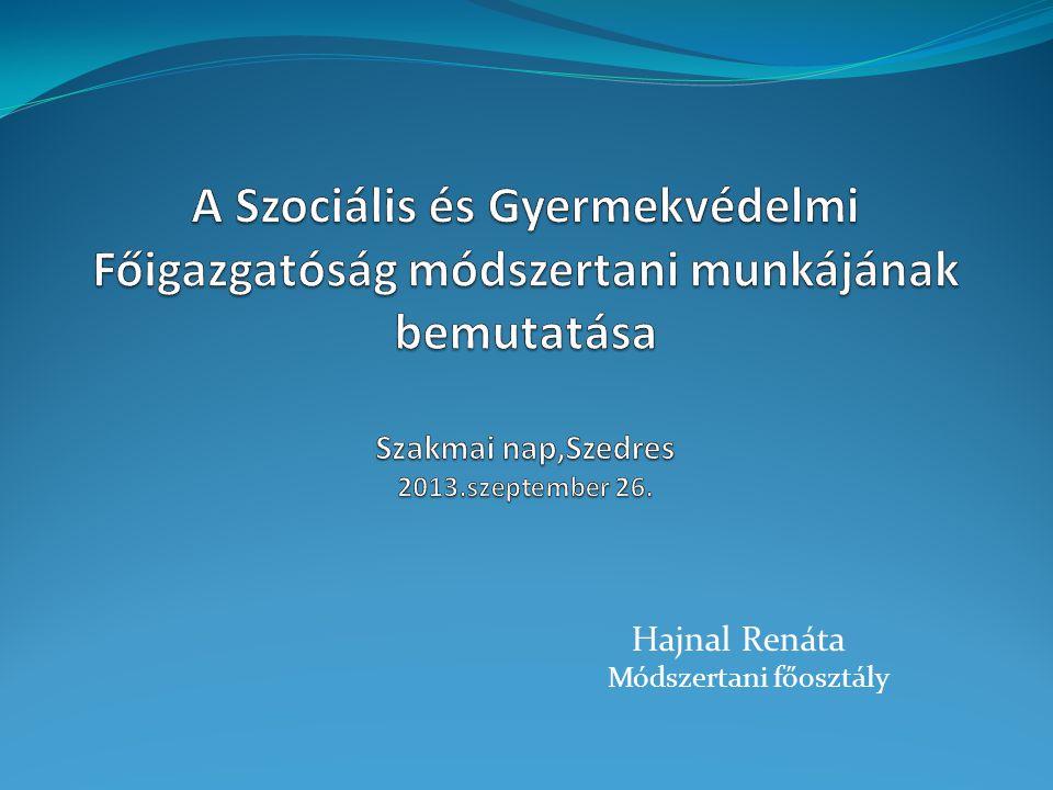 A Szociális és Gyermekvédelmi Főigazgatóság módszertani munkájának bemutatása Szakmai nap,Szedres 2013.szeptember 26.
