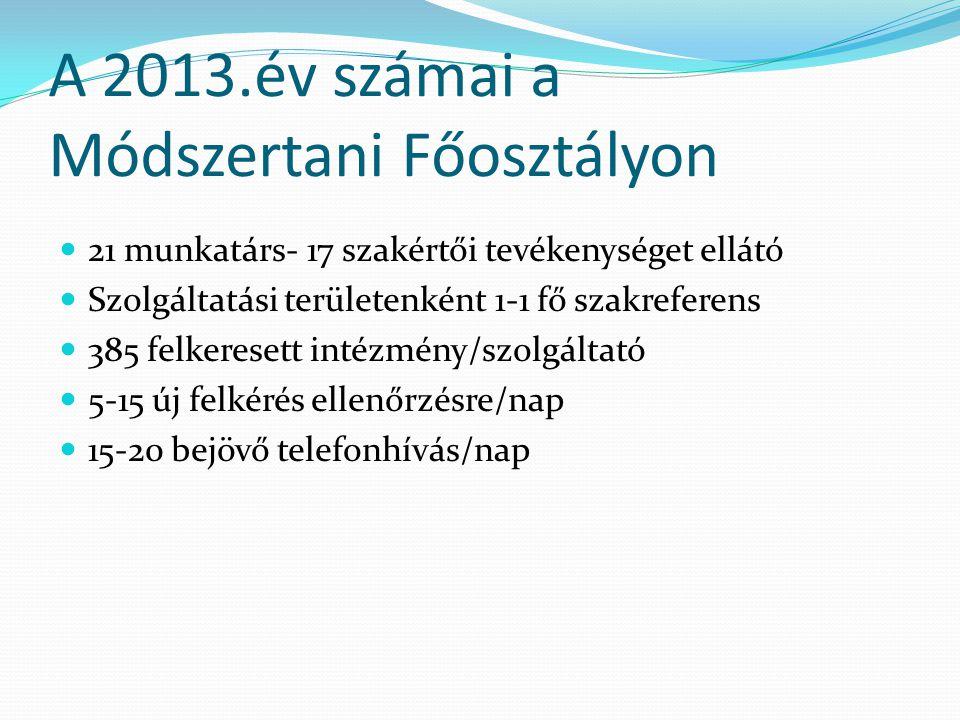 A 2013.év számai a Módszertani Főosztályon