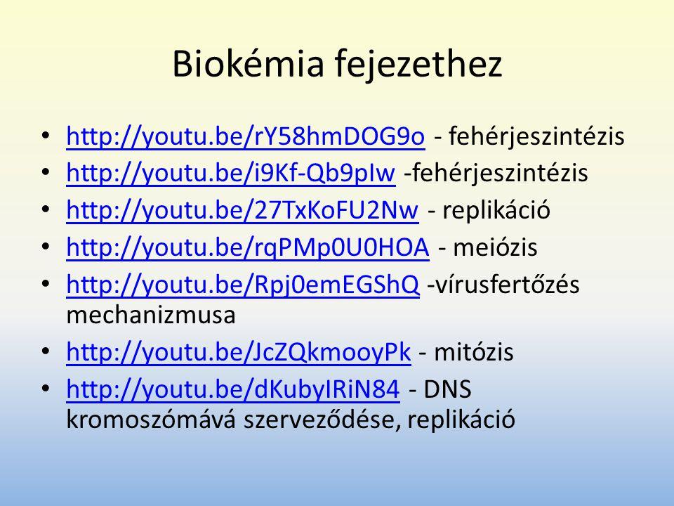 Biokémia fejezethez http://youtu.be/rY58hmDOG9o - fehérjeszintézis