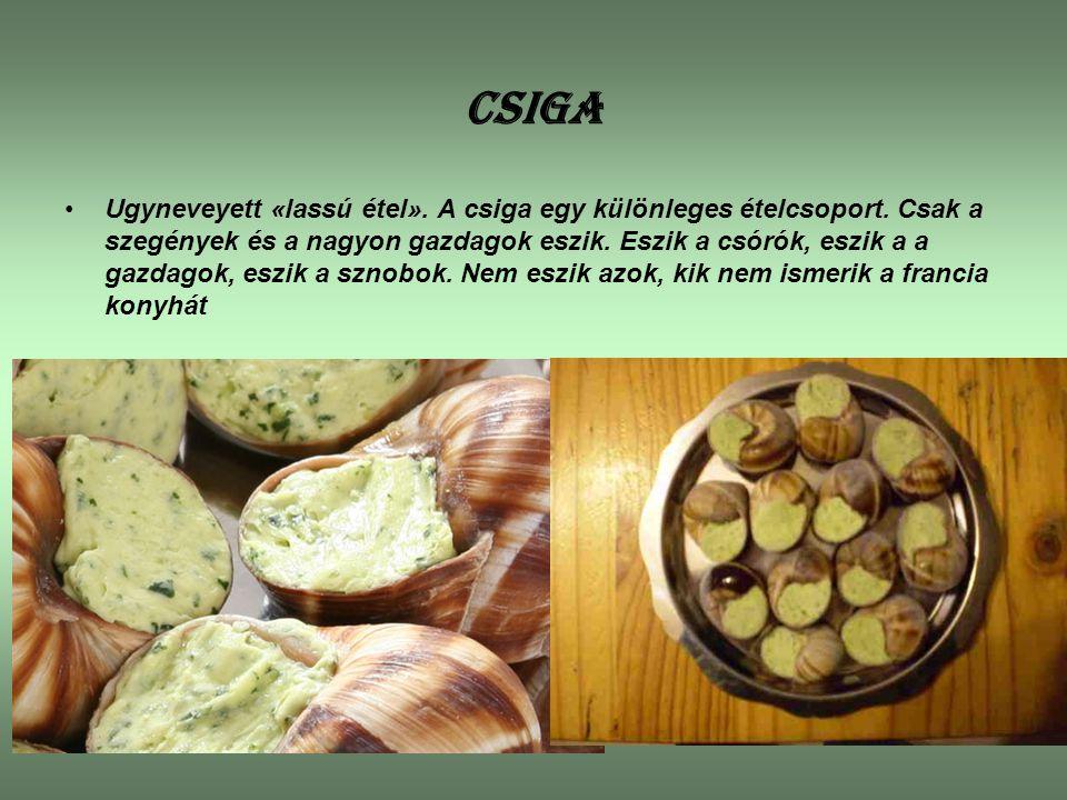 CSIGA