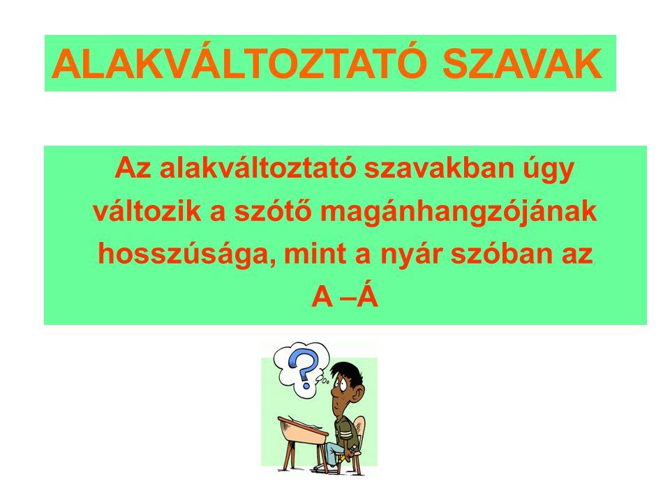 ALAKVÁLTOZTATÓ SZAVAK