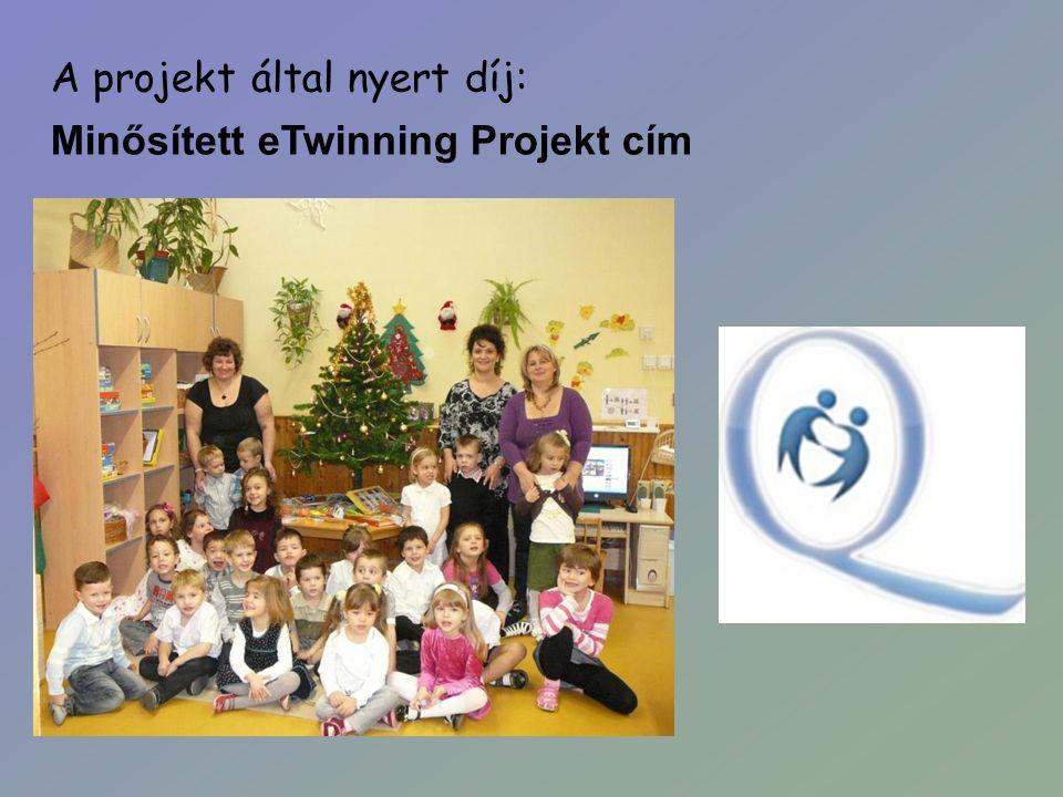 A projekt által nyert díj: