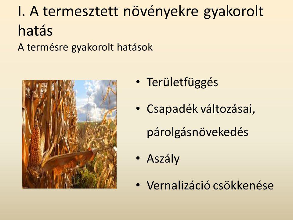 I. A termesztett növényekre gyakorolt hatás A termésre gyakorolt hatások