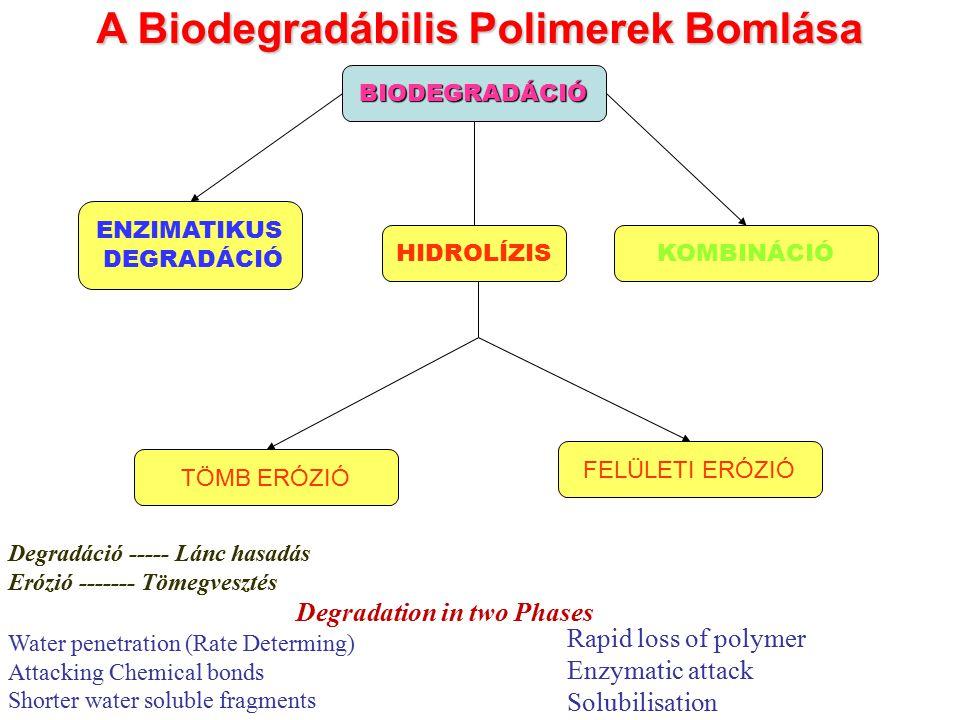 A Biodegradábilis Polimerek Bomlása