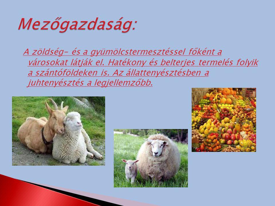 Mezőgazdaság: