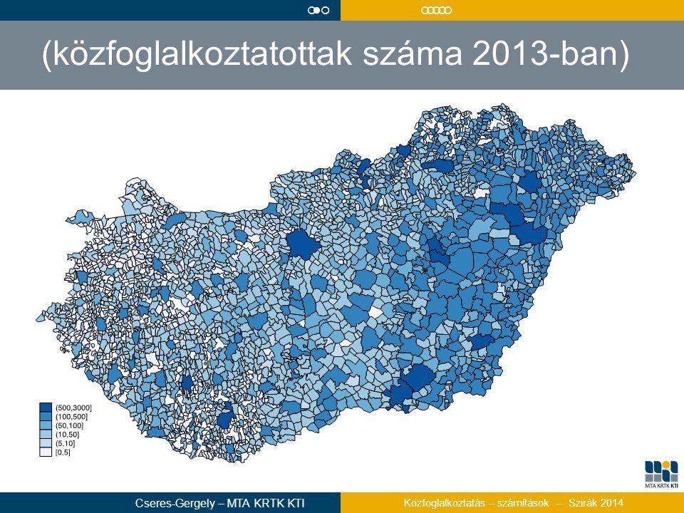 (közfoglalkoztatottak száma 2013-ban)