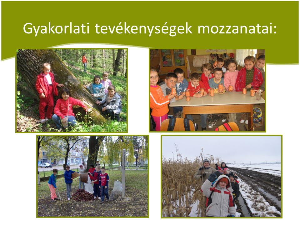 Gyakorlati tevékenységek mozzanatai: