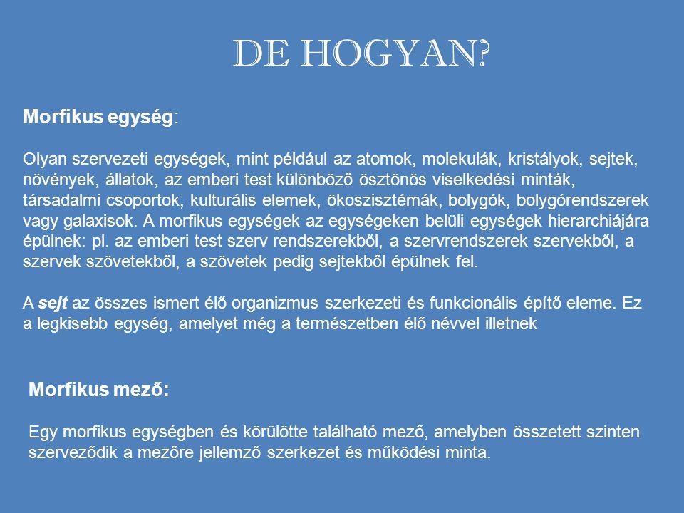 DE HOGYAN Morfikus egység: Morfikus mező:
