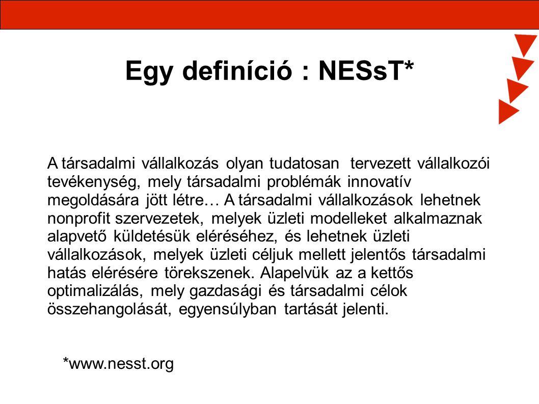 Egy definíció : NESsT*