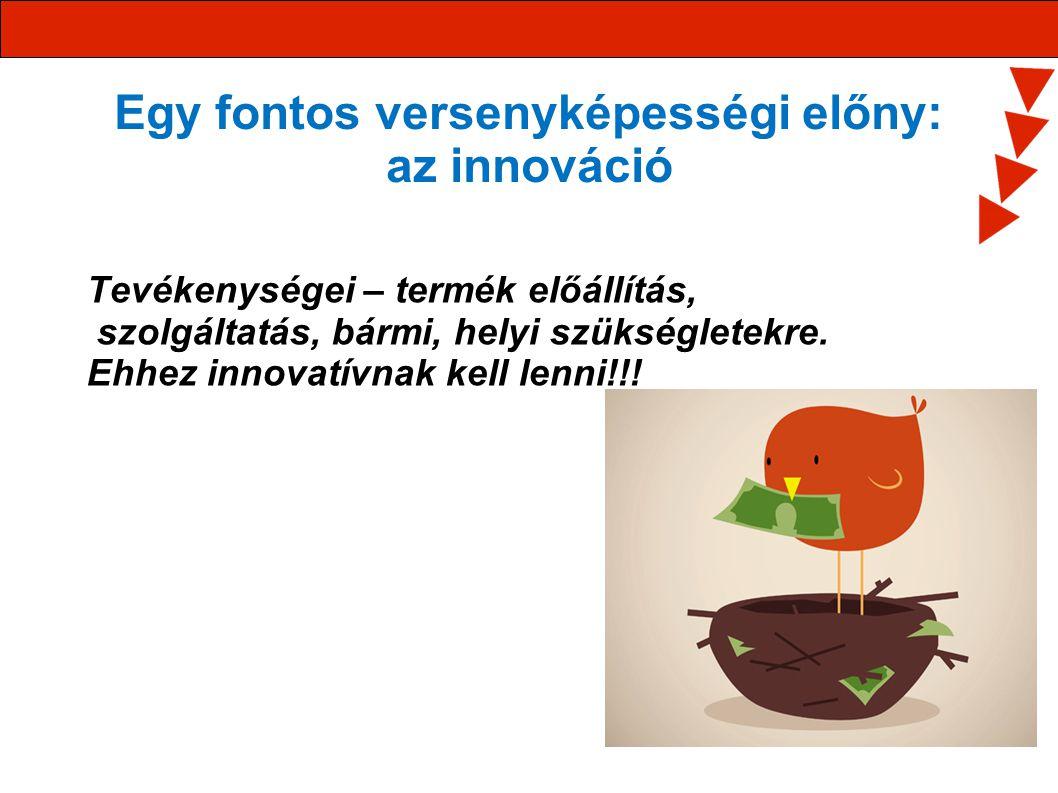 Egy fontos versenyképességi előny: az innováció