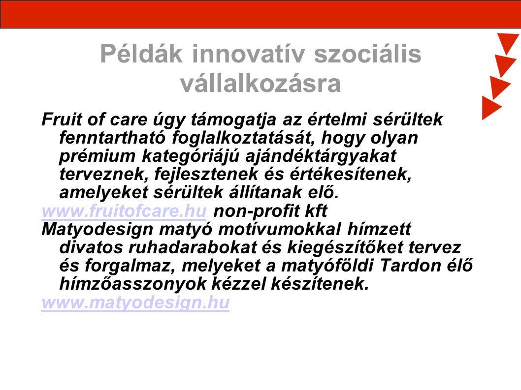Példák innovatív szociális vállalkozásra