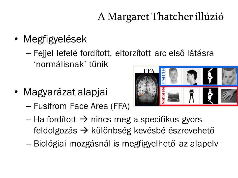 A Margaret Thatcher illúzió