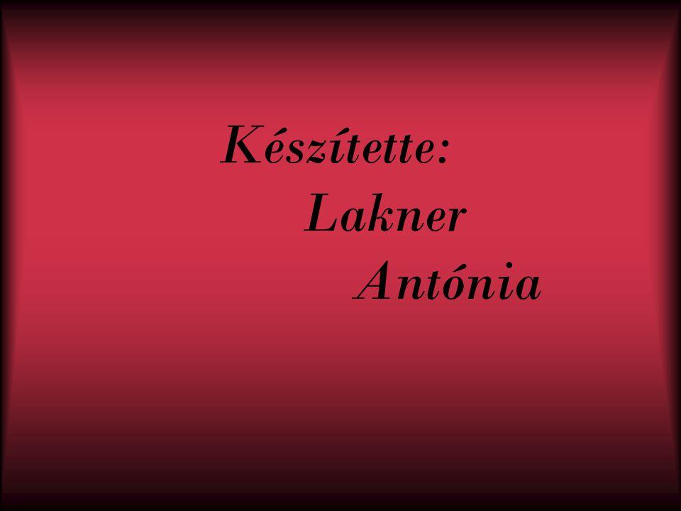 Készítette: Lakner Antónia