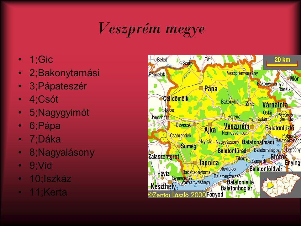 Veszprém megye 1;Gic 2;Bakonytamási 3;Pápateszér 4;Csót 5;Nagygyimót