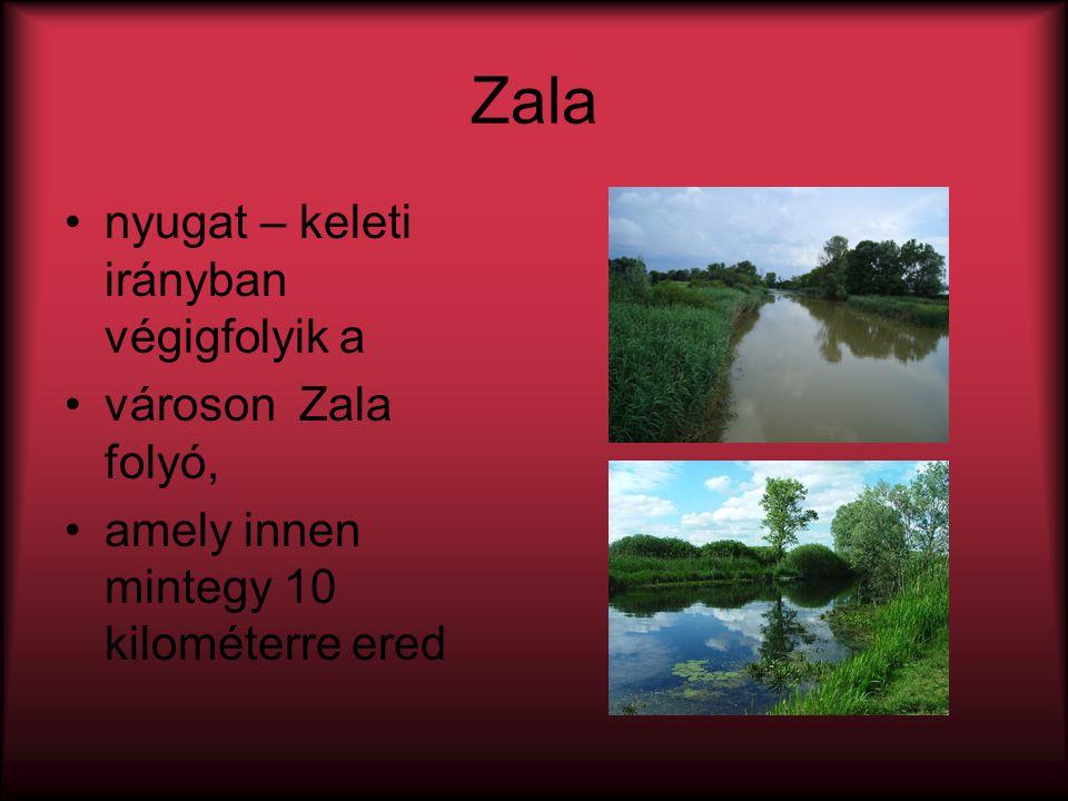 Zala nyugat – keleti irányban végigfolyik a városon Zala folyó,