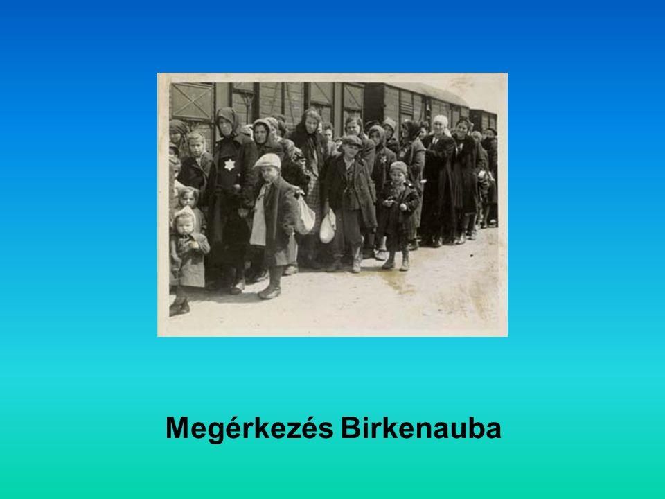 Megérkezés Birkenauba