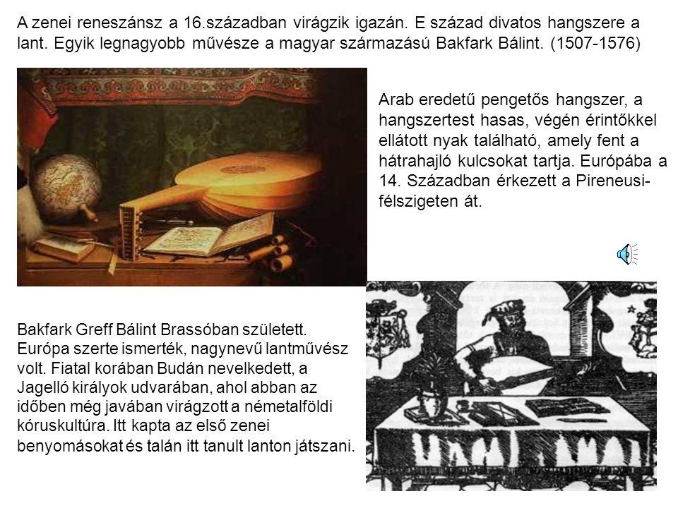 Arab eredetű pengetős hangszer, a hangszertest hasas, végén érintőkkel