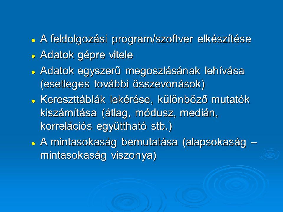 A feldolgozási program/szoftver elkészítése
