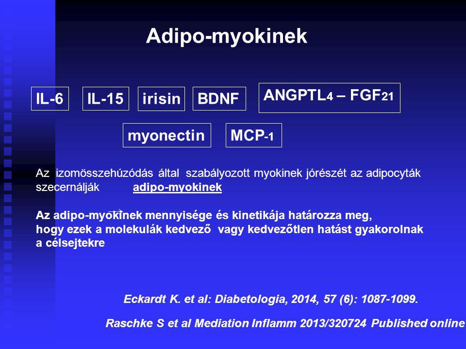 Adipo-myokinek ANGPTL4 – FGF21 IL-6 IL-15 irisin BDNF myonectin MCP-1