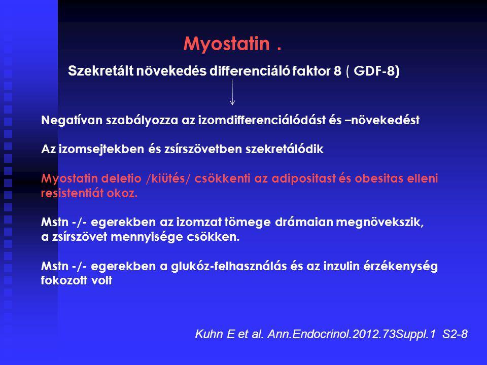 Myostatin . Szekretált növekedés differenciáló faktor 8 ( GDF-8)