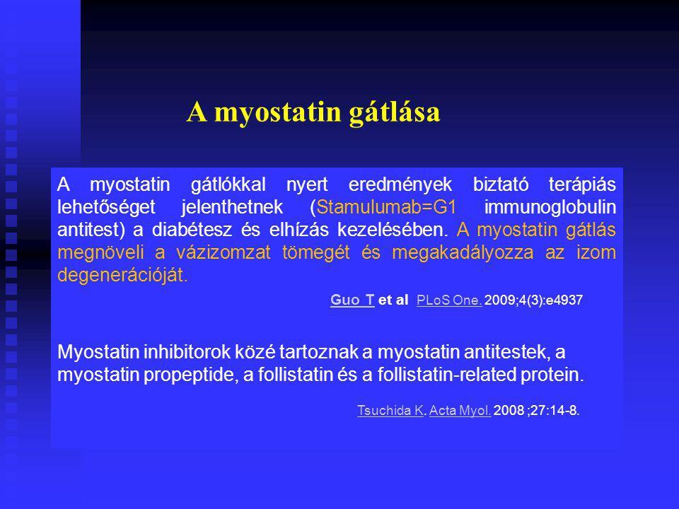 A myostatin gátlása