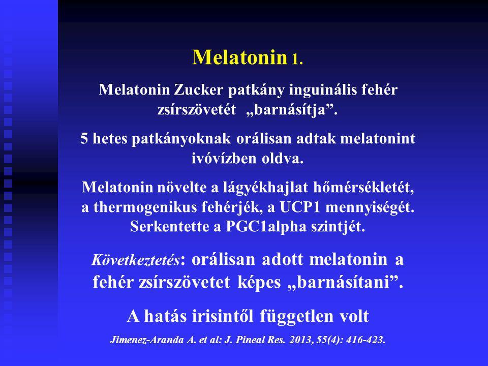 Melatonin 1. A hatás irisintől független volt