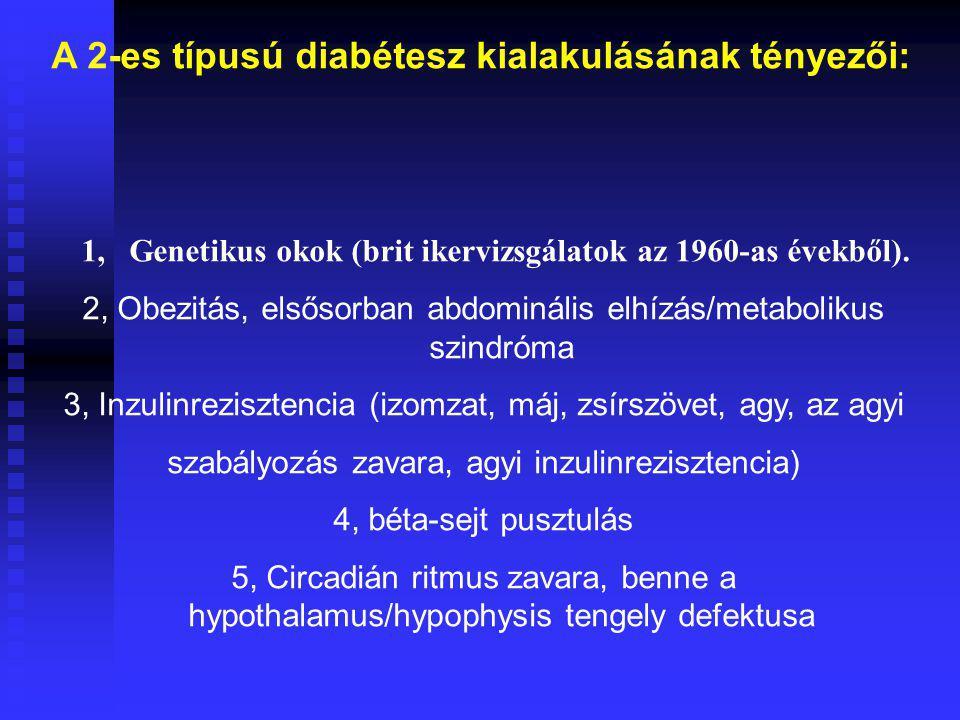 A 2-es típusú diabétesz kialakulásának tényezői: