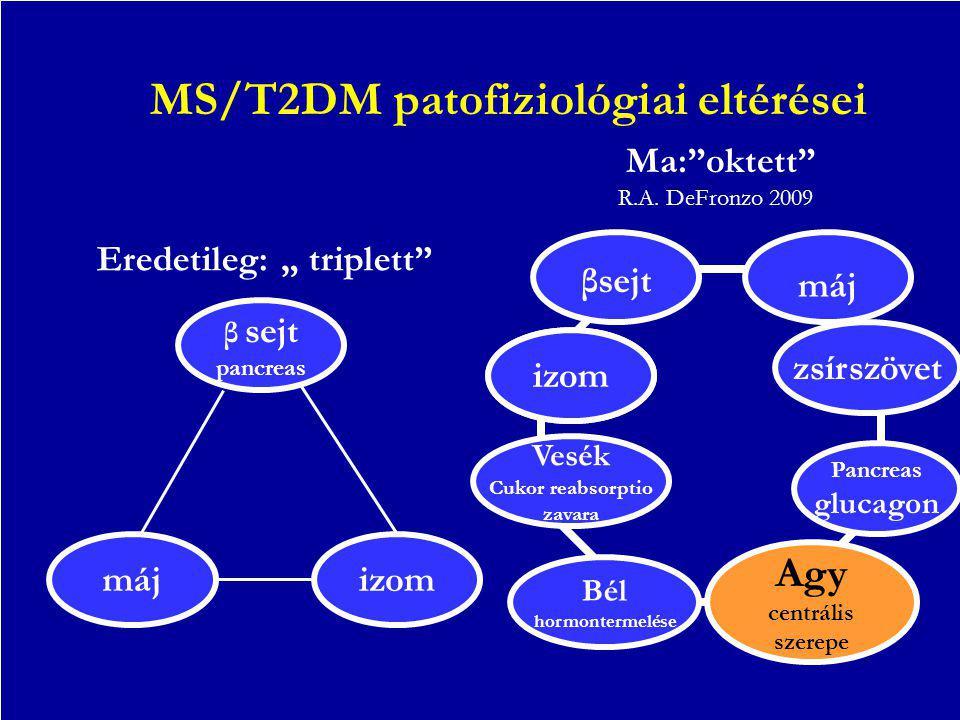 MS/T2DM patofiziológiai eltérései