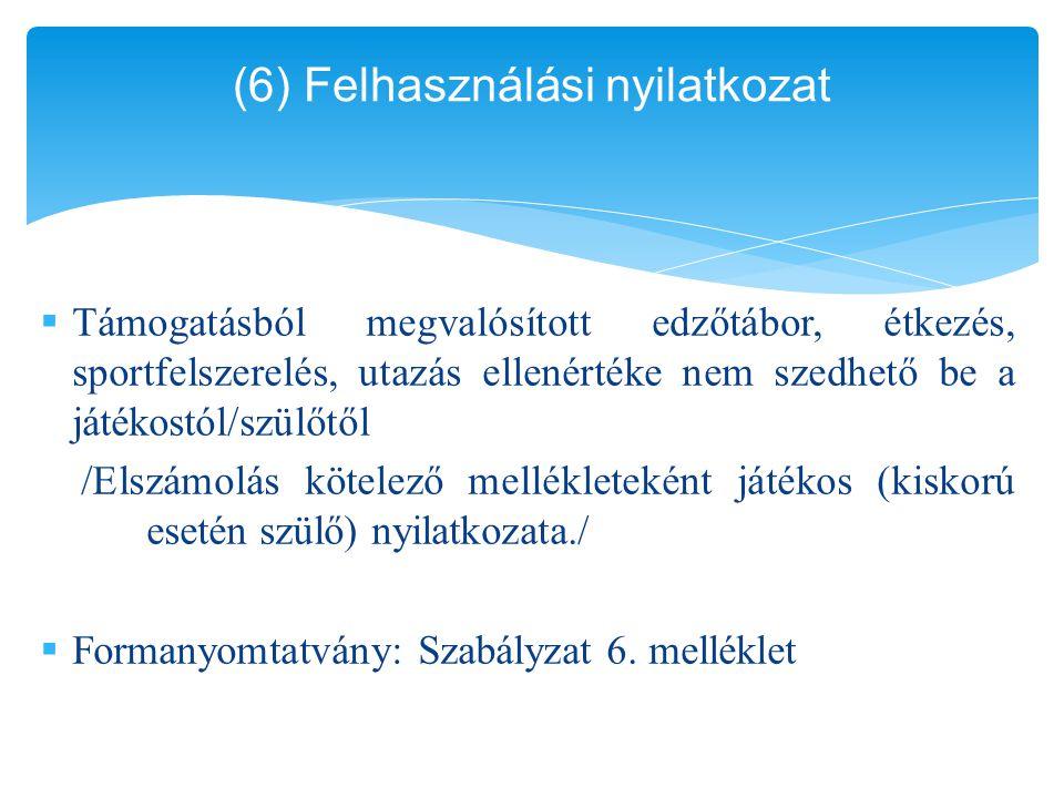 (6) Felhasználási nyilatkozat
