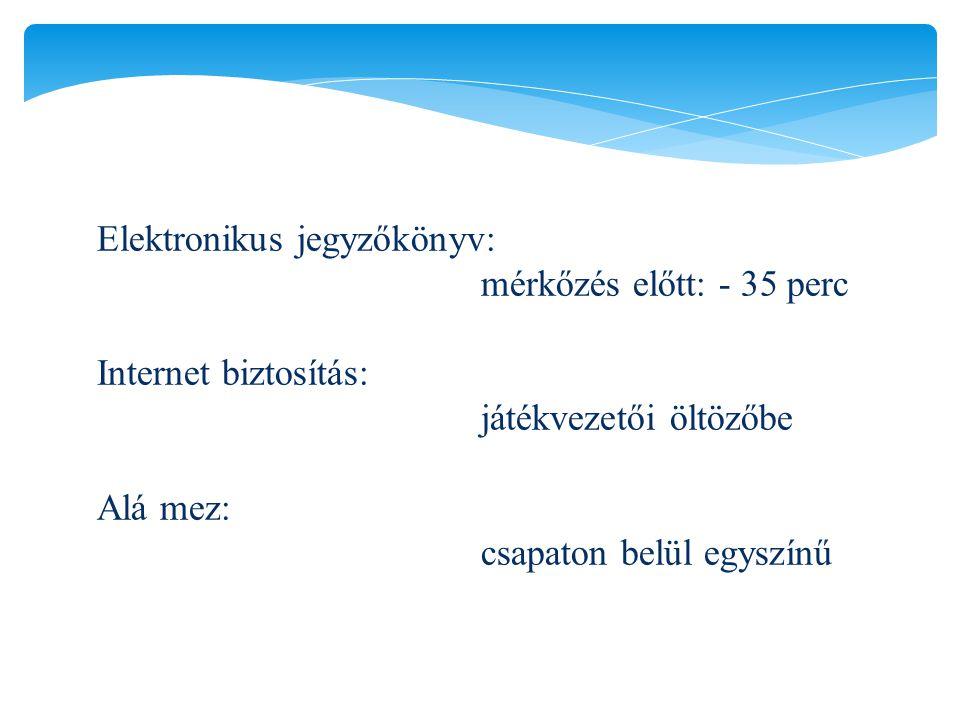 Elektronikus jegyzőkönyv: