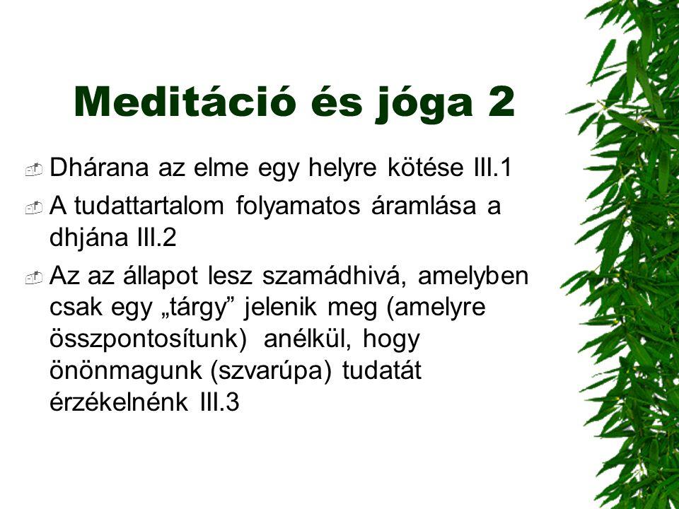 Meditáció és jóga 2 Dhárana az elme egy helyre kötése III.1