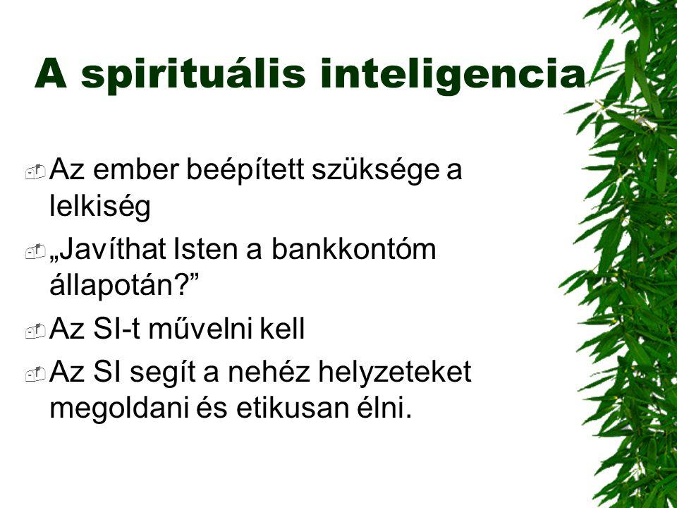 A spirituális inteligencia