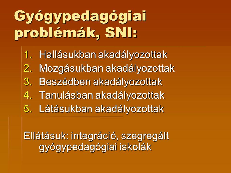 Gyógypedagógiai problémák, SNI: