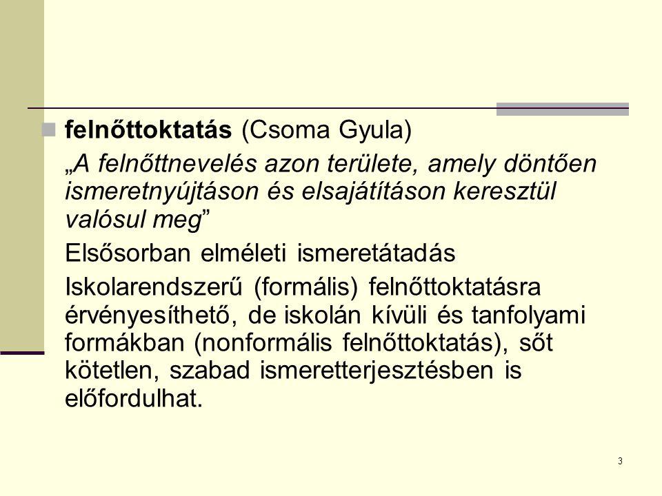 felnőttoktatás (Csoma Gyula)