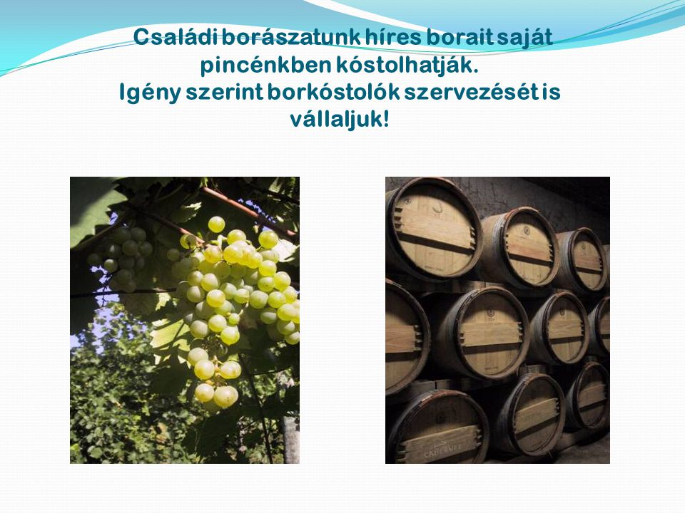 Családi borászatunk híres borait saját pincénkben kóstolhatják