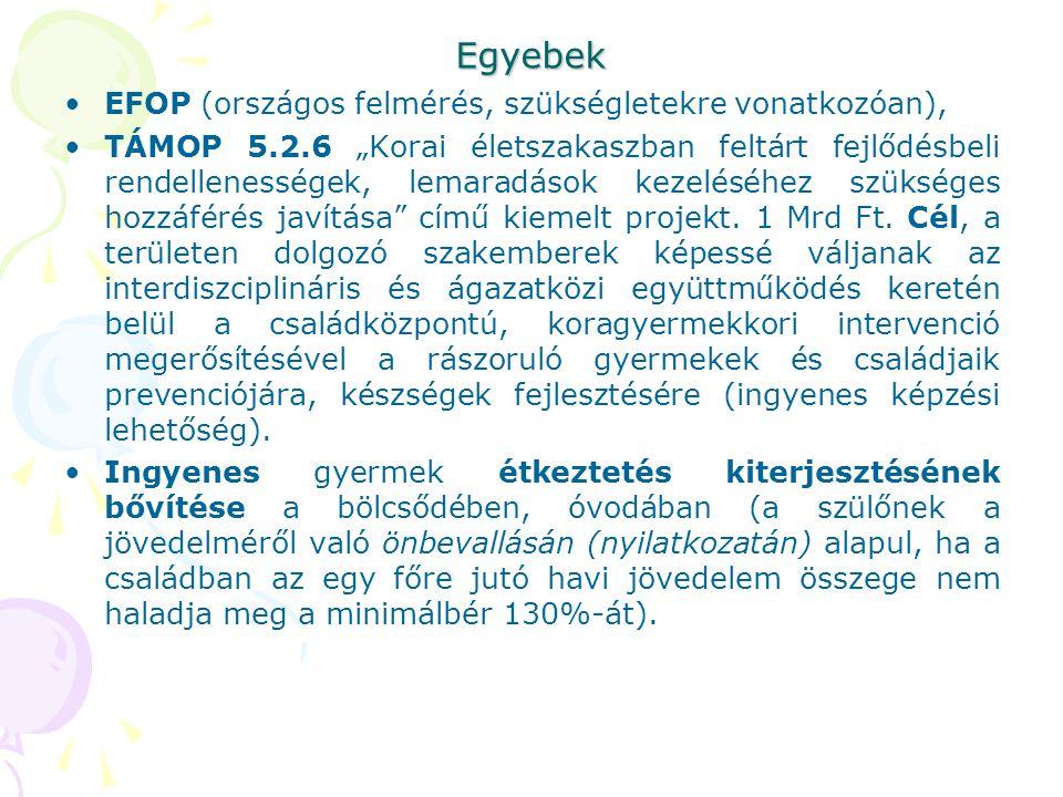 Egyebek EFOP (országos felmérés, szükségletekre vonatkozóan),