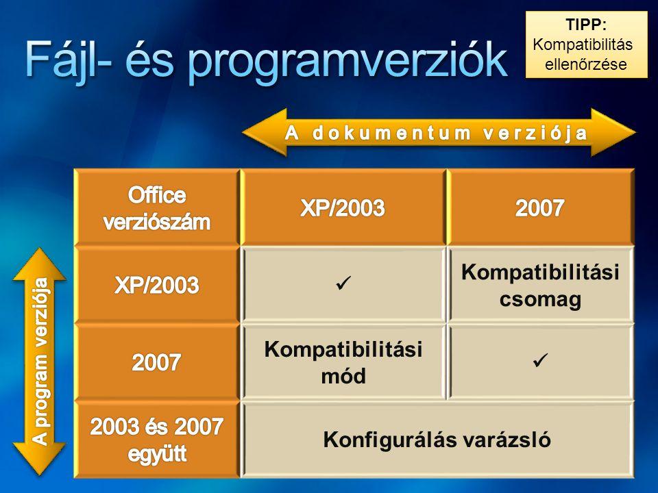 Fájl- és programverziók