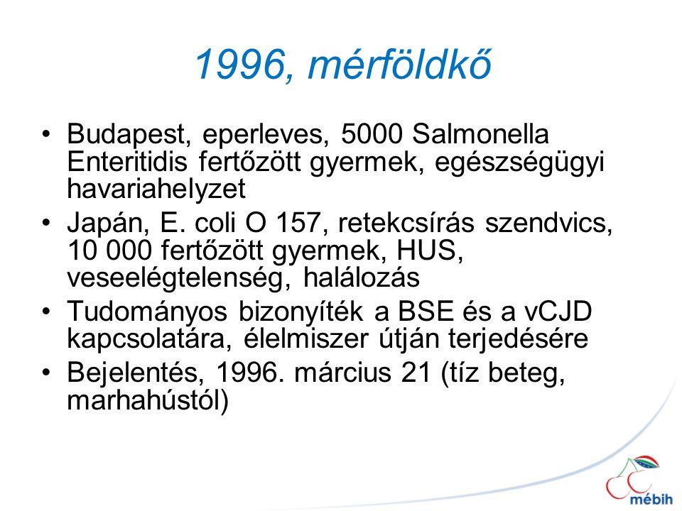 1996, mérföldkő Budapest, eperleves, 5000 Salmonella Enteritidis fertőzött gyermek, egészségügyi havariahelyzet.