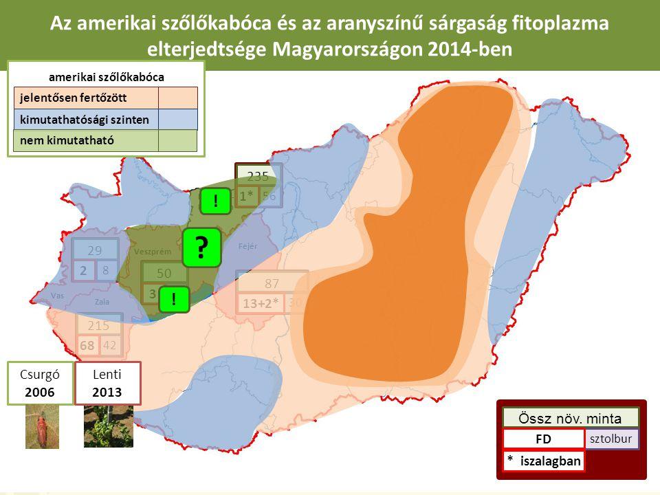 Az amerikai szőlőkabóca és az aranyszínű sárgaság fitoplazma elterjedtsége Magyarországon 2014-ben